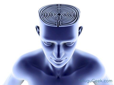 మెమరీ లాస్ కు : Brain Implant